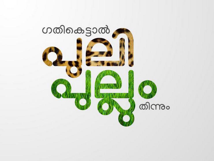 manjari-illustration3