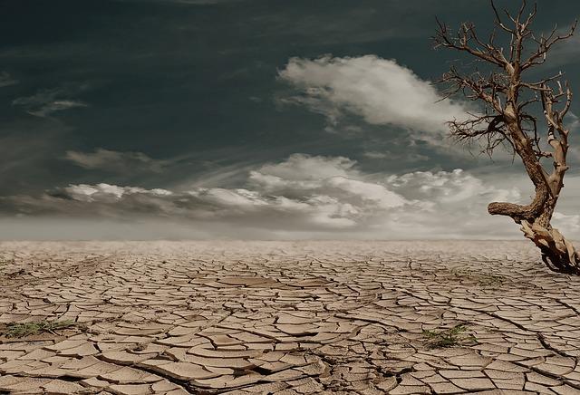 drought-land